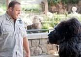 点击观看《动物园看守》