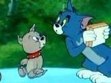 猫和老鼠四川方言版 17
